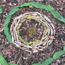 Woodland Art