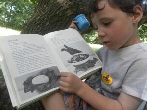 Enjoying an old book about woodcraft
