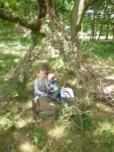 Picnic lunch in your den!
